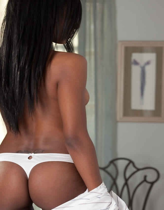 playboy ebony playmate patrice hollis